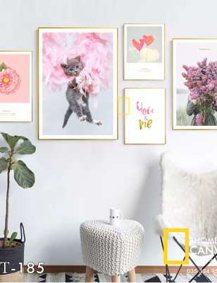 Bộ 3 Tranh Canvas Mèo và Hoa WT-185