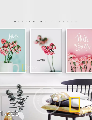 Bộ 3 Tranh Canvas Hoa cẩm chướng hello Spring WT-200