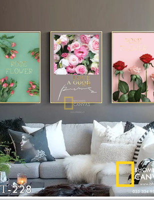 Bộ 3 Tranh Canvas Hoa Hồng Love Flower WT-228